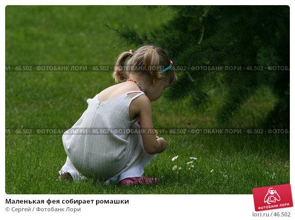 Маленькая фея собирает ромашки, фото № 46502, снято 22 мая 2007 г. (c) Сергей / Фотобанк Лори