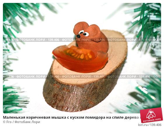 Маленькая коричневая мышка с куском помидора на спиле дерева в обрамлении зеленой мишуры, фото № 139406, снято 27 июня 2017 г. (c) Fro / Фотобанк Лори