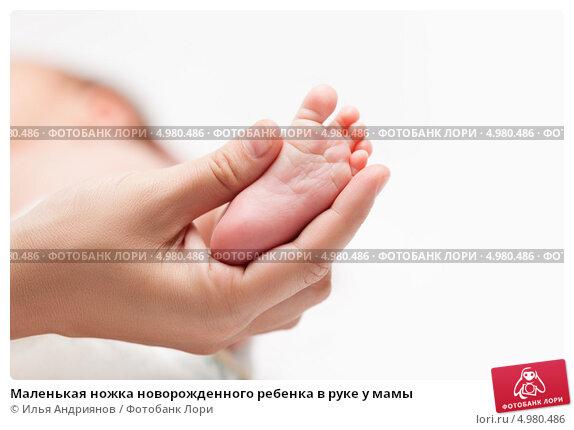 Купить «Маленькая ножка новорожденного ребенка в руке у мамы», фото № 4980486, снято 23 июня 2013 г. (c) Илья Андриянов / Фотобанк Лори