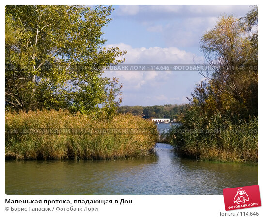 Маленькая протока, впадающая в Дон, фото № 114646, снято 10 сентября 2006 г. (c) Борис Панасюк / Фотобанк Лори