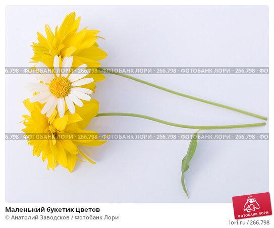 Маленький букетик цветов, фото № 266798, снято 12 августа 2006 г. (c) Анатолий Заводсков / Фотобанк Лори