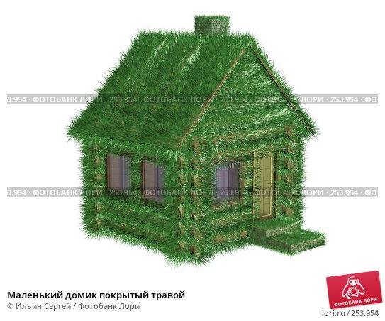 Маленький домик покрытый травой, иллюстрация № 253954 (c) Ильин Сергей / Фотобанк Лори