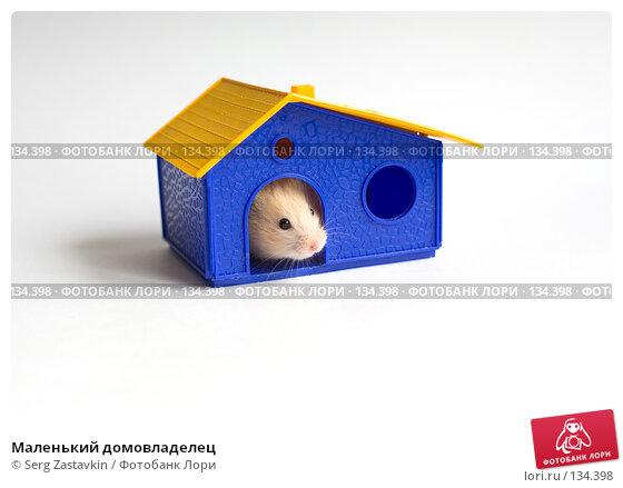 Купить «Маленький домовладелец», фото № 134398, снято 14 мая 2006 г. (c) Serg Zastavkin / Фотобанк Лори
