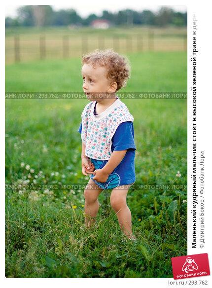 Маленький кудрявый мальчик стоит в высокой зеленой траве в деревне и улыбается, фото № 293762, снято 15 июля 2006 г. (c) Дмитрий Боков / Фотобанк Лори