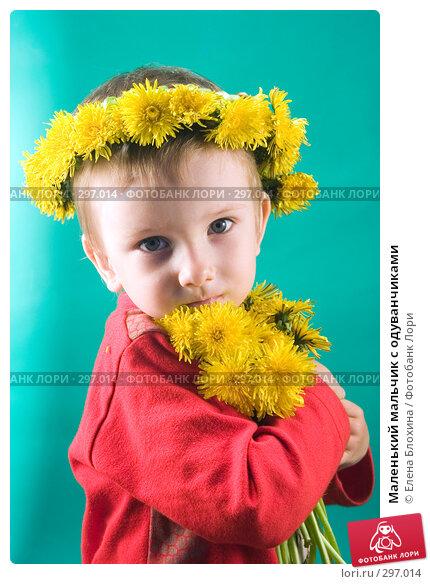 Маленький мальчик с одуванчиками, фото № 297014, снято 18 мая 2008 г. (c) Елена Блохина / Фотобанк Лори