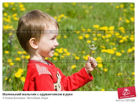 Маленький мальчик с одуванчиком в руке, фото № 297026, снято 18 мая 2008 г. (c) Елена Блохина / Фотобанк Лори