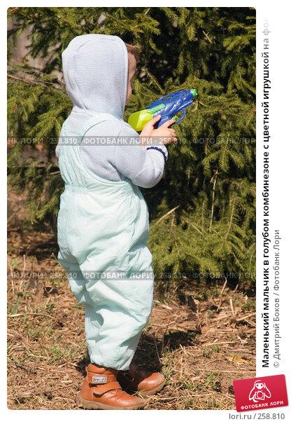 Маленький мальчик в голубом комбинезоне с цветной игрушкой на фоне хвойного дерева (1), фото № 258810, снято 20 апреля 2008 г. (c) Дмитрий Боков / Фотобанк Лори