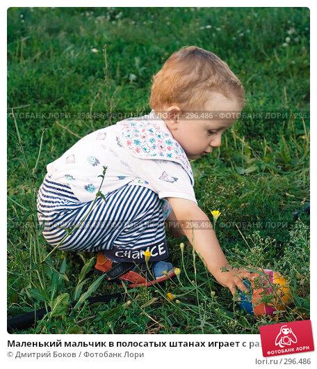 Маленький мальчик в полосатых штанах играет с разноцветным мячом сидя на корточках в высокой зеленой траве, фото № 296486, снято 16 июля 2006 г. (c) Дмитрий Боков / Фотобанк Лори