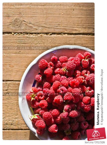 Малина. Raspberry, фото № 312526, снято 3 июля 2005 г. (c) Кравецкий Геннадий / Фотобанк Лори