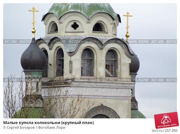 Малые купола колокольни (крупный план), фото № 257350, снято 19 апреля 2008 г. (c) Сергей Бочаров / Фотобанк Лори