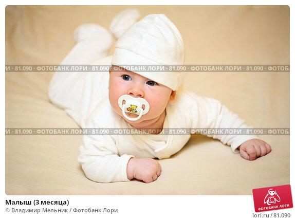 Малыш (3 месяца), фото № 81090, снято 27 августа 2007 г. (c) Владимир Мельник / Фотобанк Лори