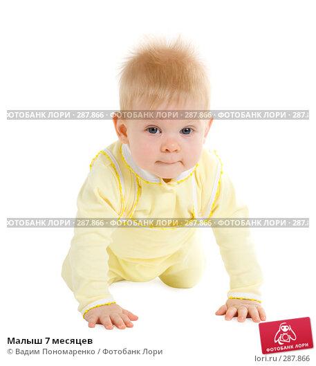 Малыш 7 месяцев, фото № 287866, снято 29 февраля 2008 г. (c) Вадим Пономаренко / Фотобанк Лори