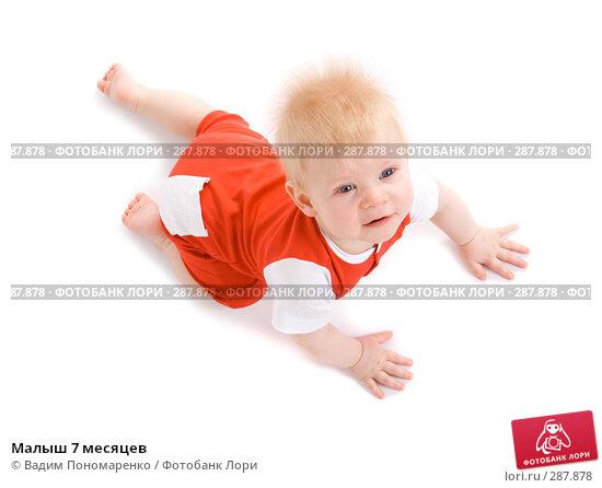 Малыш 7 месяцев, фото № 287878, снято 29 февраля 2008 г. (c) Вадим Пономаренко / Фотобанк Лори