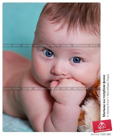 Малыш на голубом фоне, фото № 320366, снято 1 февраля 2007 г. (c) Алена Роот / Фотобанк Лори