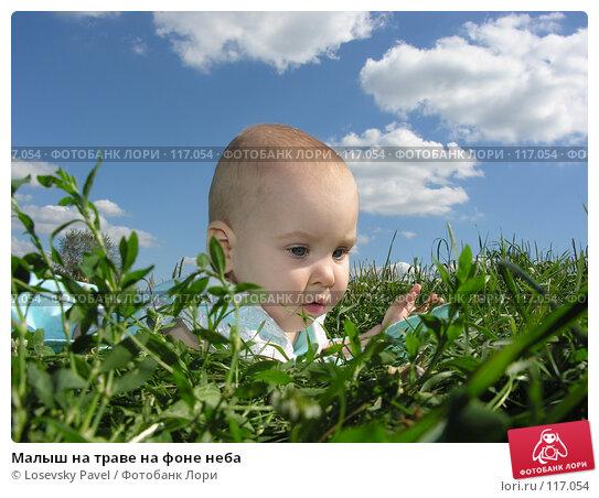 Малыш на траве на фоне неба, фото № 117054, снято 4 августа 2005 г. (c) Losevsky Pavel / Фотобанк Лори