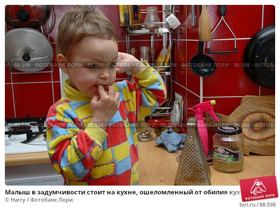 Малыш в задумчивости стоит на кухне, ошеломленный от обилия кухонных инструментов, фото № 88598, снято 4 июня 2007 г. (c) Harry / Фотобанк Лори
