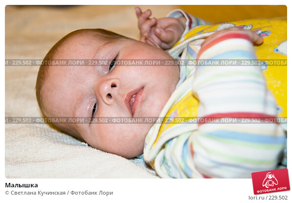 Малышка, фото № 229502, снято 24 января 2017 г. (c) Светлана Кучинская / Фотобанк Лори
