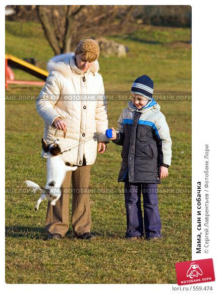 Купить «Мама, сын и собачка», фото № 559474, снято 13 ноября 2008 г. (c) Сергей Лаврентьев / Фотобанк Лори
