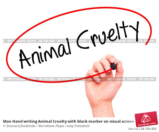 Купить «Man Hand writing Animal Cruelty with black marker on visual screen», фото № 28150450, снято 20 июня 2018 г. (c) easy Fotostock / Фотобанк Лори
