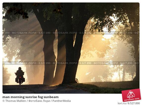 Купить «man morning sunrise fog sunbeam», фото № 8527890, снято 14 ноября 2018 г. (c) PantherMedia / Фотобанк Лори