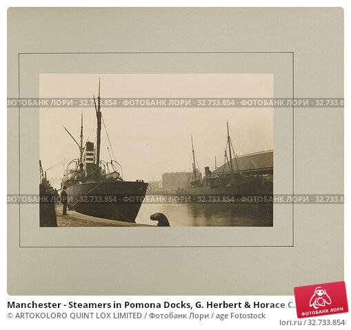 Купить «Manchester - Steamers in Pomona Docks, G. Herbert & Horace C. Bayley, Manchester, England, negative January 1894, print 1894, Gelatin silver print, 15.1 × 23 cm (5 15/16 × 9 1/16 in.)», фото № 32733854, снято 17 июня 2019 г. (c) age Fotostock / Фотобанк Лори
