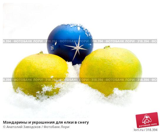 Мандарины и украшения для елки в снегу, фото № 318394, снято 11 ноября 2006 г. (c) Анатолий Заводсков / Фотобанк Лори