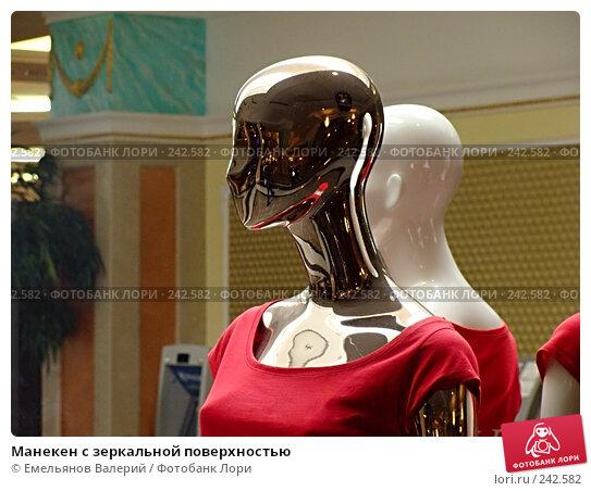 Манекен с зеркальной поверхностью, фото № 242582, снято 1 апреля 2008 г. (c) Емельянов Валерий / Фотобанк Лори