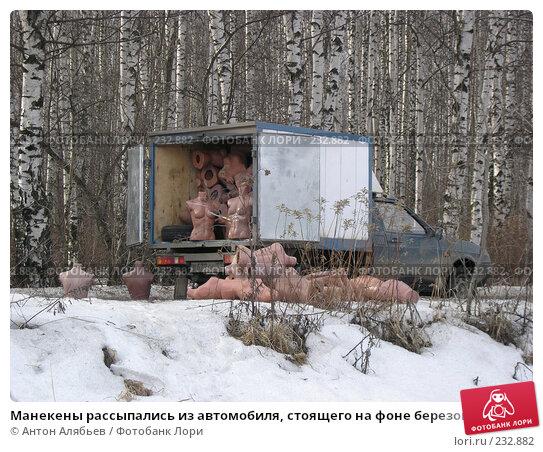 Манекены рассыпались из автомобиля, стоящего на фоне березовой рощи, фото № 232882, снято 14 марта 2008 г. (c) Антон Алябьев / Фотобанк Лори