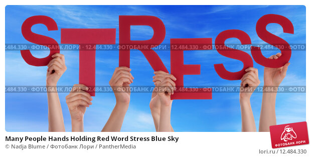 red and blue stress essay Great collection of paper writing guides and free samples ask our experts to get writing help submit your essay for analysis.
