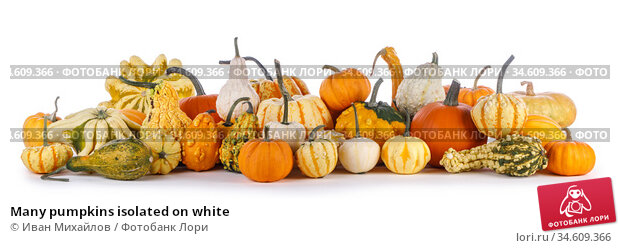 Many pumpkins isolated on white. Стоковое фото, фотограф Иван Михайлов / Фотобанк Лори