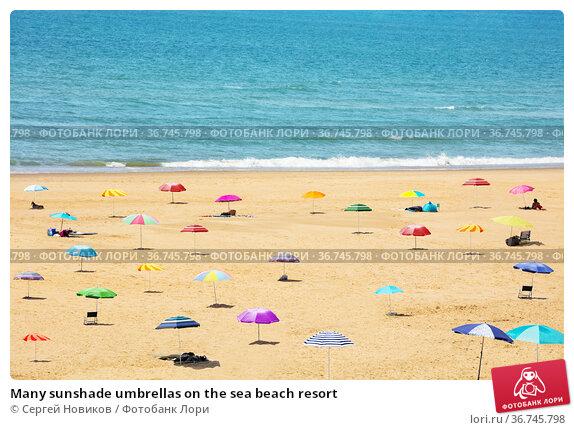 Many sunshade umbrellas on the sea beach resort. Стоковое фото, фотограф Сергей Новиков / Фотобанк Лори