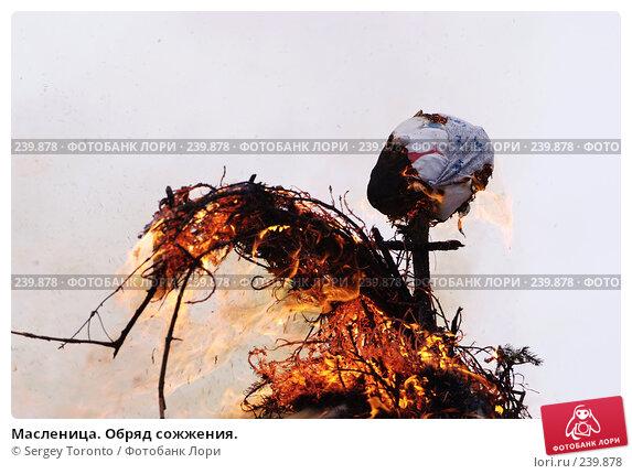 Масленица. Обряд сожжения., фото № 239878, снято 9 марта 2008 г. (c) Sergey Toronto / Фотобанк Лори
