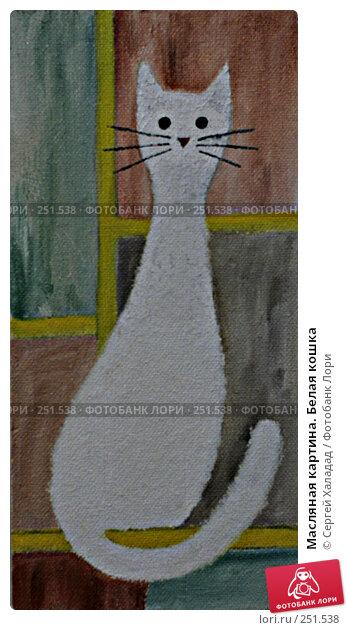 Масляная картина. Белая кошка, иллюстрация № 251538 (c) Сергей Халадад / Фотобанк Лори