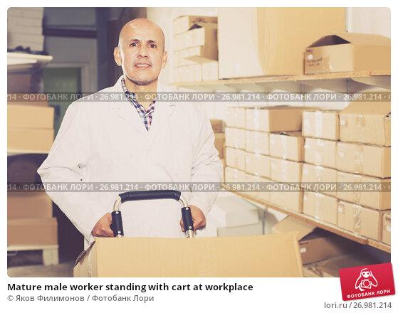 Mature male worker standing with cart at workplace, фото № 26981214, снято 22 апреля 2017 г. (c) Яков Филимонов / Фотобанк Лори
