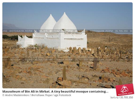 Mausoleum of Bin Ali in Mirbat. A tiny beautiful mosque containing... Стоковое фото, фотограф Andre Maslennikov / age Fotostock / Фотобанк Лори