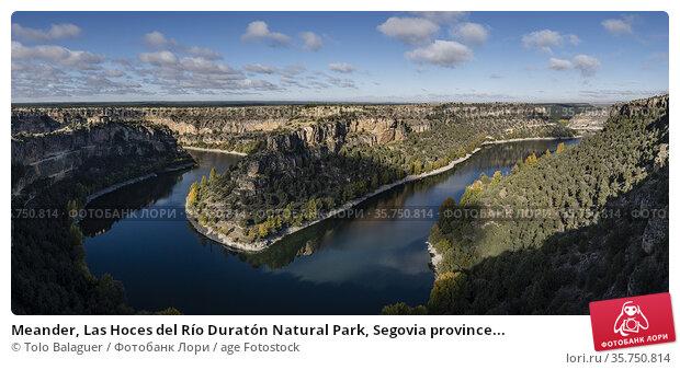 Meander, Las Hoces del Río Duratón Natural Park, Segovia province... Стоковое фото, фотограф Tolo Balaguer / age Fotostock / Фотобанк Лори
