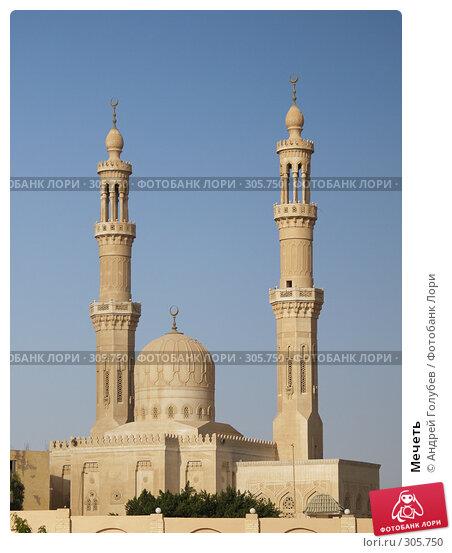 Мечеть, фото № 305750, снято 16 декабря 2006 г. (c) Андрей Голубев / Фотобанк Лори