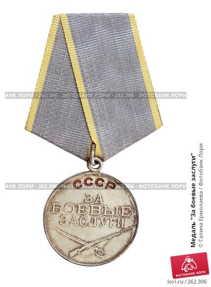 "Медаль ""За боевые заслуги"", фото № 262306, снято 16 апреля 2008 г. (c) Галина Ермолаева / Фотобанк Лори"
