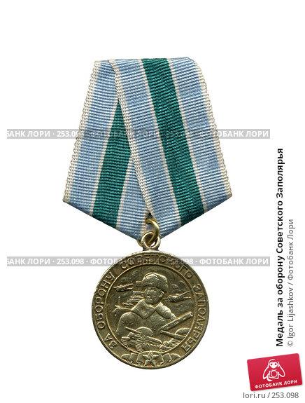 Медаль за оборону Советского Заполярья, фото № 253098, снято 28 июля 2017 г. (c) Igor Lijashkov / Фотобанк Лори
