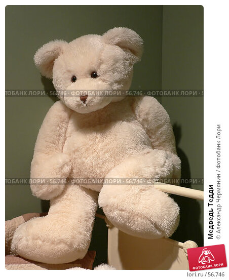 Медведь Тедди, фото № 56746, снято 16 августа 2005 г. (c) Александр Чермянин / Фотобанк Лори