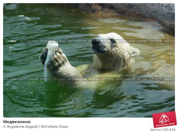 Медвежонок, эксклюзивное фото № 331614, снято 18 июня 2008 г. (c) Журавлев Андрей / Фотобанк Лори
