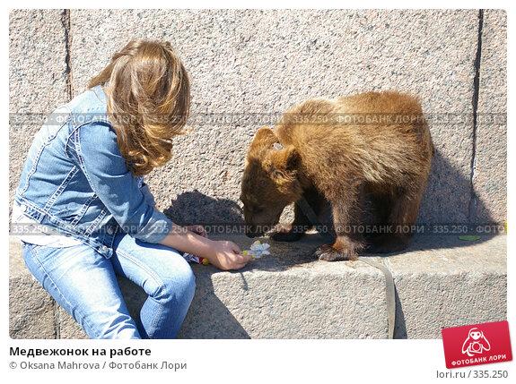 Медвежонок на работе, фото № 335250, снято 13 июня 2008 г. (c) Oksana Mahrova / Фотобанк Лори