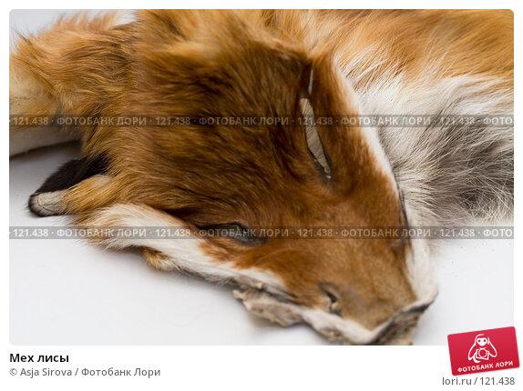 Мех лисы, фото № 121438, снято 19 ноября 2007 г. (c) Asja Sirova / Фотобанк Лори