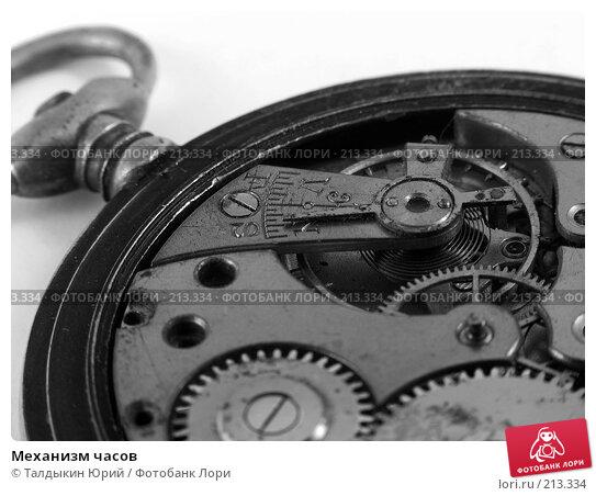 Купить «Механизм часов», фото № 213334, снято 29 февраля 2008 г. (c) Талдыкин Юрий / Фотобанк Лори
