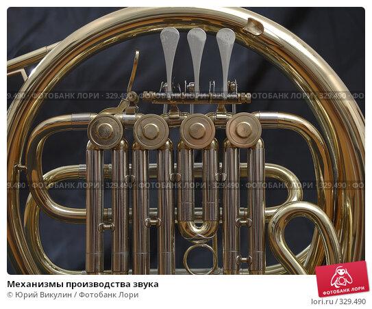 Механизмы производства звука, фото № 329490, снято 18 июня 2008 г. (c) Юрий Викулин / Фотобанк Лори