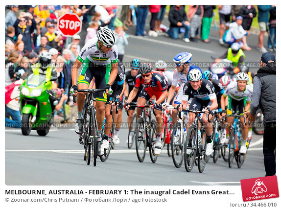 MELBOURNE, AUSTRALIA - FEBRUARY 1: The inaugral Cadel Evans Great... Стоковое фото, фотограф Zoonar.com/Chris Putnam / age Fotostock / Фотобанк Лори