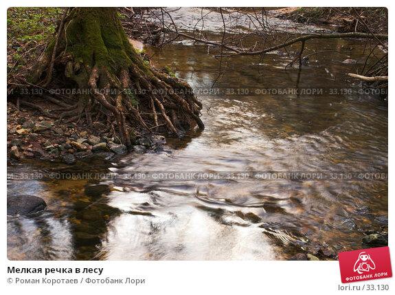 Мелкая речка в лесу, фото № 33130, снято 14 апреля 2007 г. (c) Роман Коротаев / Фотобанк Лори