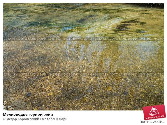Мелководье горной реки, фото № 243442, снято 4 апреля 2008 г. (c) Федор Королевский / Фотобанк Лори