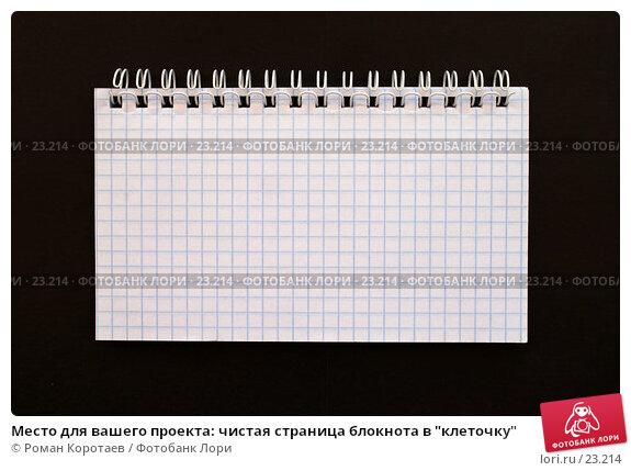 """Место для вашего проекта: чистая страница блокнота в """"клеточку"""", фото № 23214, снято 11 ноября 2006 г. (c) Роман Коротаев / Фотобанк Лори"""
