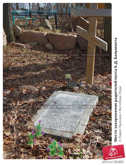 Место захоронения родителей поэта К.Д. Бальмонта, фото № 26602, снято 24 марта 2007 г. (c) Павел Преснов / Фотобанк Лори